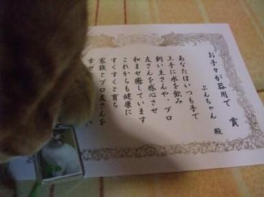 018_20081214014135.jpg