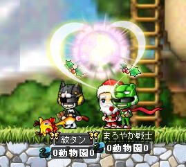 Maple0004_20081225154647.jpg
