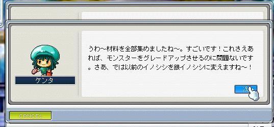 Maple0009_20081007094321.jpg