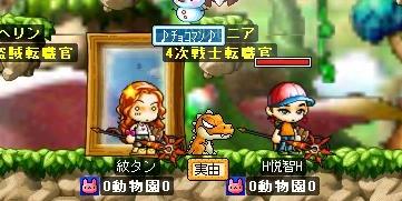 Maple0009_20081013110032.jpg