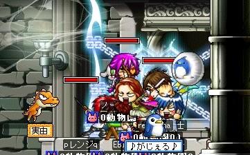 Maple0012_20081007093035.jpg