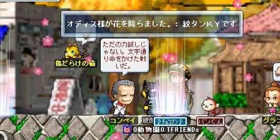 Maple0017_20090116111716.jpg