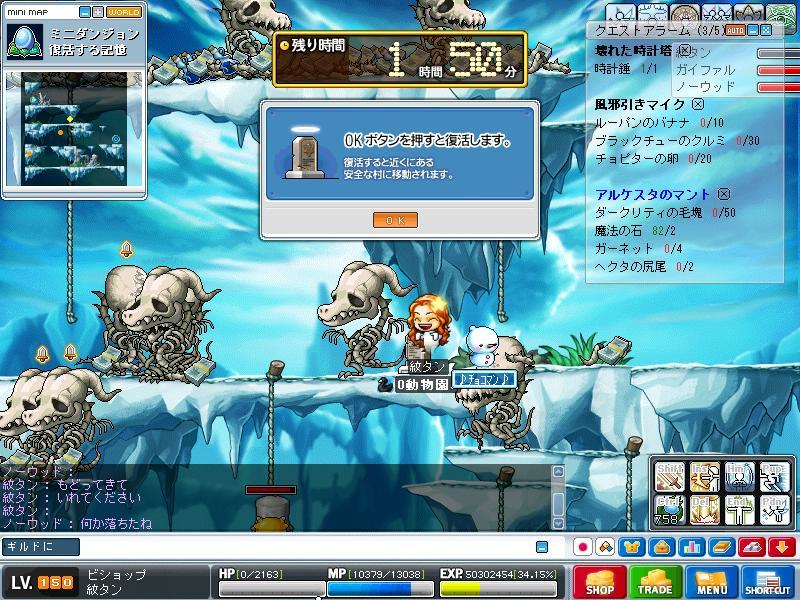 Maple0020_20081217152842.jpg