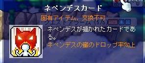 Maple0023_20081217152930.jpg