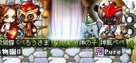 Maple0025_20080923115619.jpg