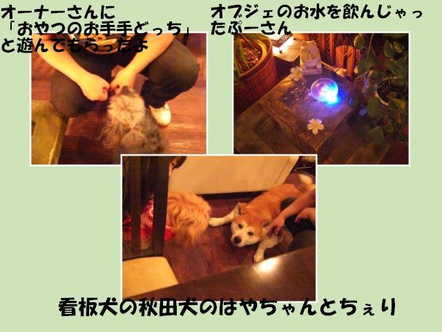 生田~asiand_R131