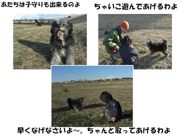 CIMG1354_R.jpg