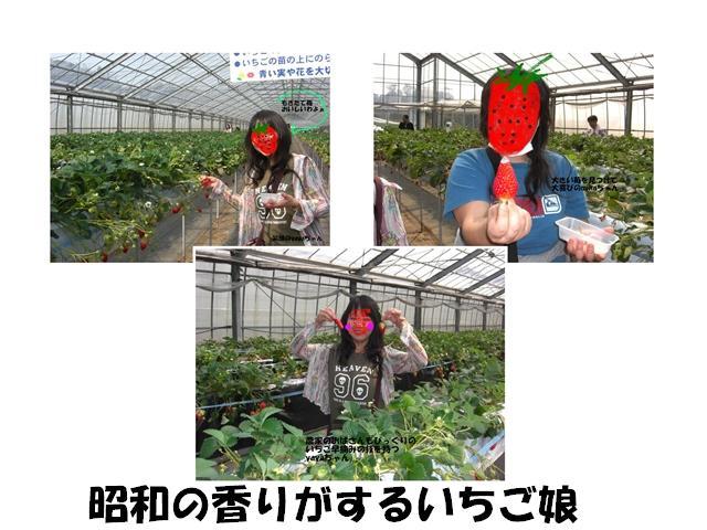 CIMG1595_R.jpg