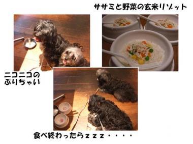 CIMG1669_R.jpg
