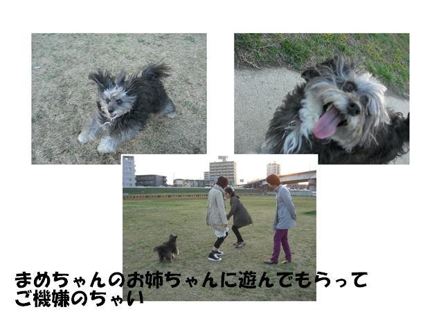 CIMG1879_R.jpg