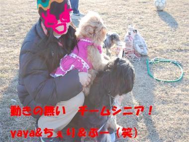 DSC_0817_R.jpg