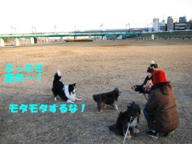 DSC_0875_R.jpg