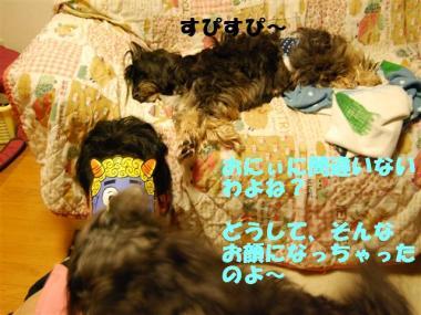 DSC_0880_R.jpg