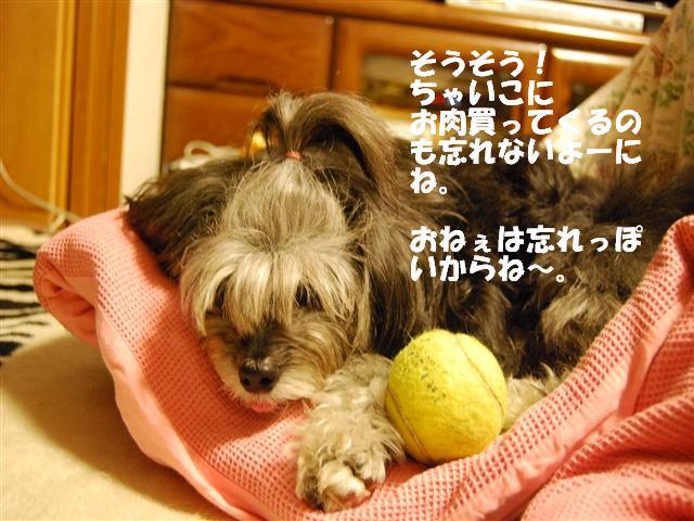 DSC_1418_R.jpg