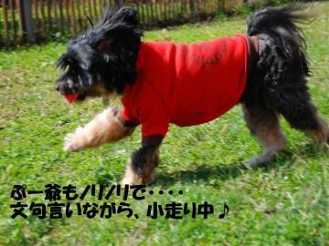 DSC_2808_R.jpg