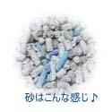 suna080512-2.jpg