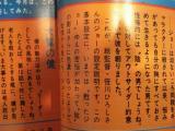 コピー ~ DSC00212