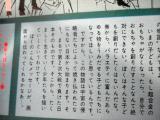 コピー ~ DSC00202