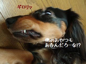 20070410235037.jpg