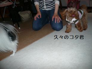 20101111.jpg