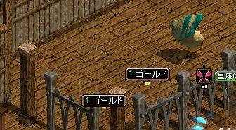 2008_01_16_003.jpg