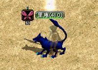 2008_01_29_001.jpg