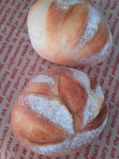 丹沢酵母 丸パン