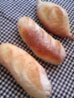 プチ酵母フランス 三種類
