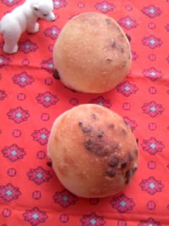 ホシノ酵母 リーン生地 プチ丸パン チョコチップ入り 2個