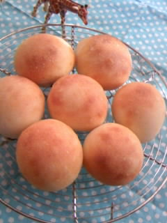 ホシノ酵母 プチ丸パン 全体