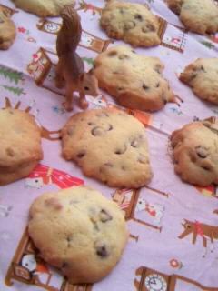チョコチップ&ピーナツチョコチップクッキー