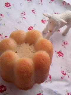 メープルバターケーキ アップ