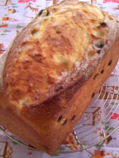 ぶどうパン 斜め全体の全体