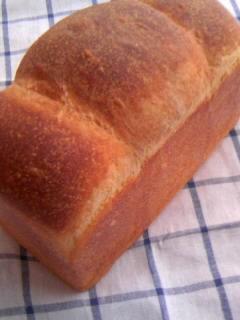 ホシノ酵母 600食パン 全体