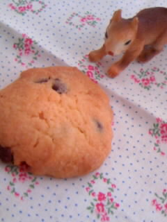 娘たちが作ったチョコチップクッキー アップ