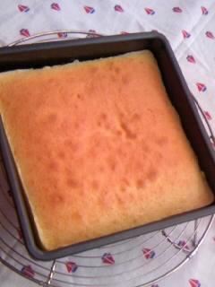 たかこさん バニラのソフトケーキ 焼き上がり 表面全体