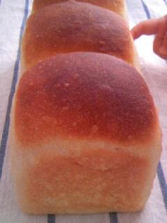 ホシノ酵母 酵母とお菓子の本から イギリスパン 縦並び