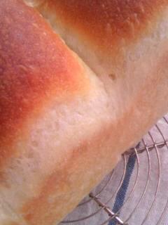 ホシノ酵母 酵母とお菓子の本から イギリスパン 釜伸びアップ