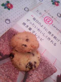 たかこさん ココナッツ&レーズンのクッキー 全体