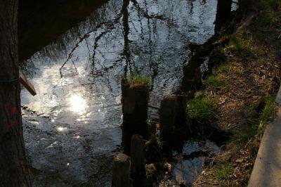 20080308_3.jpg