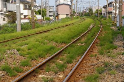 20080518_1.jpg