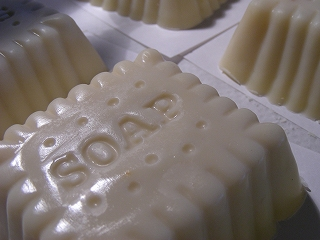 s-20090527 SOAP_002b