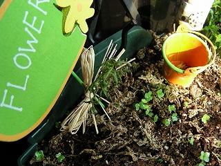 s-20090624 小さな庭で_007