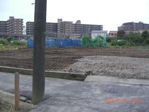 20061006133816.jpg