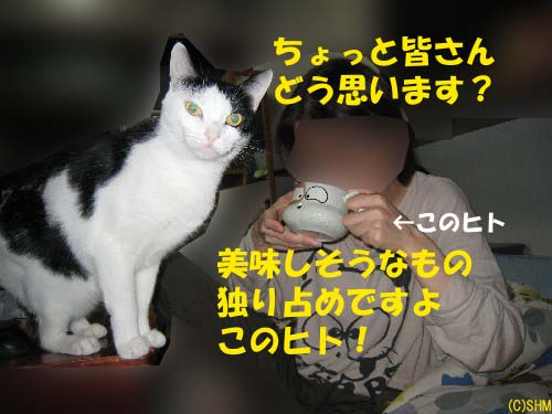 飲み物みや?