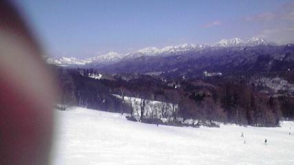 aokiko031502