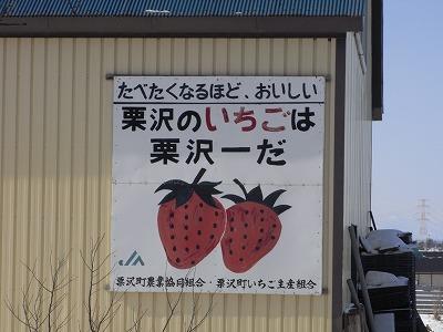 0308mesi1.jpg