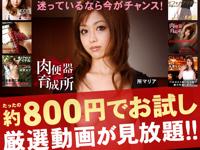 超高画質&S級女優の無修正動画サイト「一本道」が 7日間 $8 のお試し会員実施中