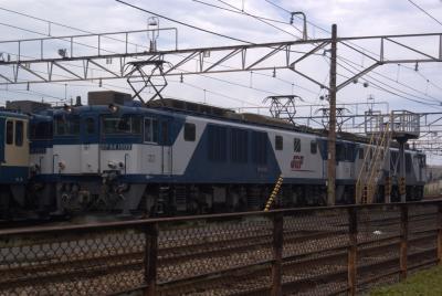 EF641009(高)