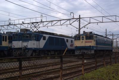 EF65との並び。